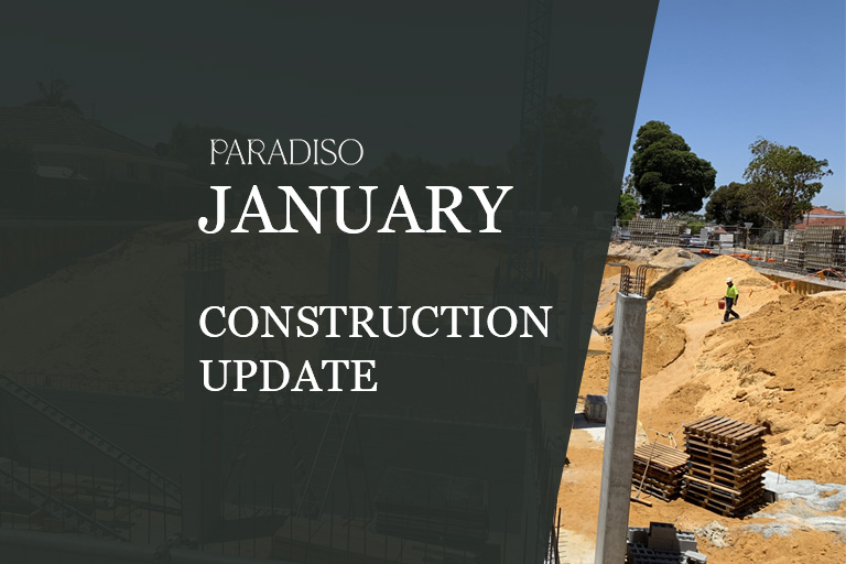 paradiso january 2020 update